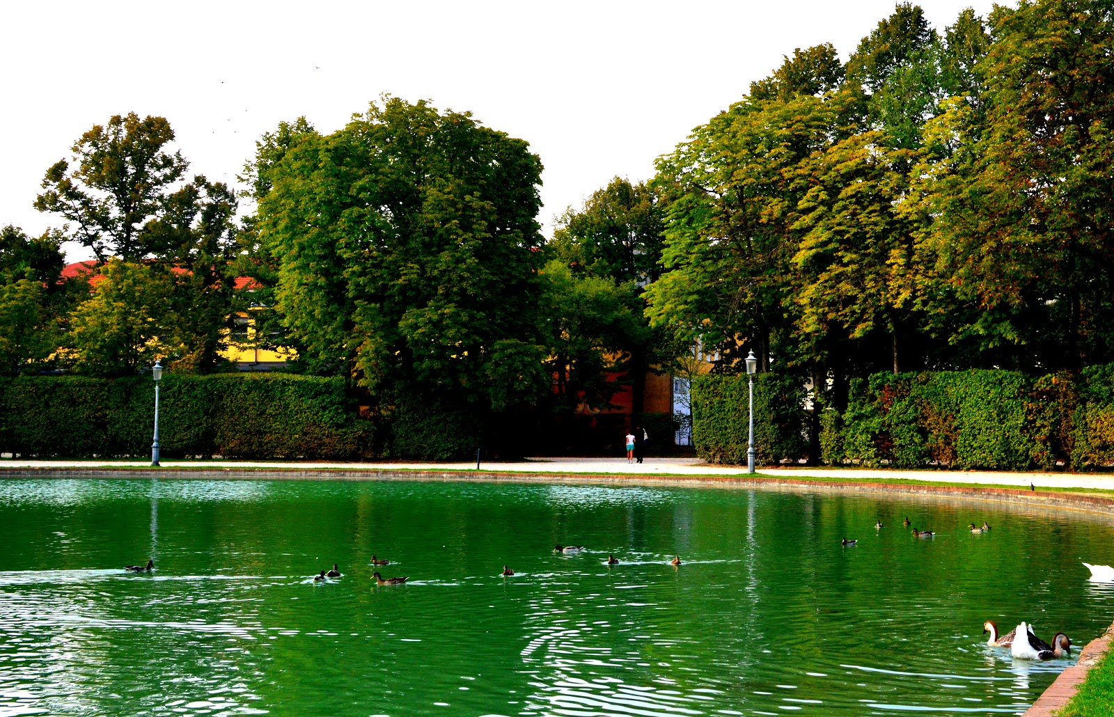 Albergo Hotel a Parma Centro o Relax e Benessere nelle Vicinanze di Parma? Hotel Campus